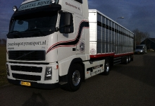 paardentransport_1